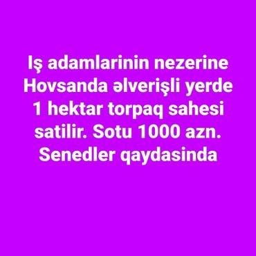 hektar - Azərbaycan: Satış 100 sot