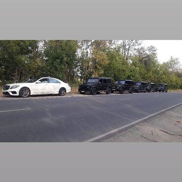 1287 объявлений: Kortej_vip_bishkek