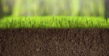 Чернозем горный рыхлый чистый без сорняков для газона клумб и теплиц
