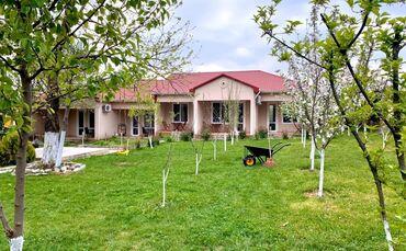 masazirda evler в Азербайджан: Сдам в аренду Дома Посуточно от собственника: 100 кв. м, 3 комнаты