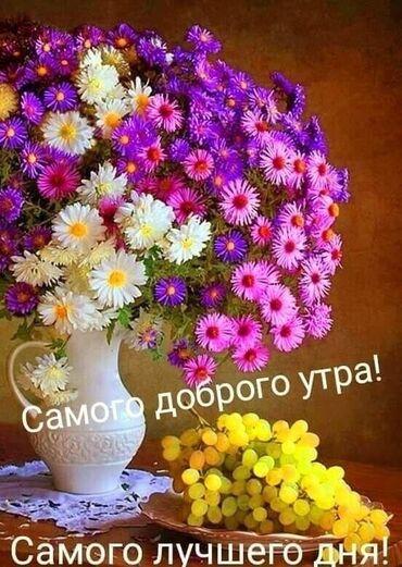 Швейное дело - Бишкек: Швея Прямострочка. Больше 6 лет опыта. Ак-Босого
