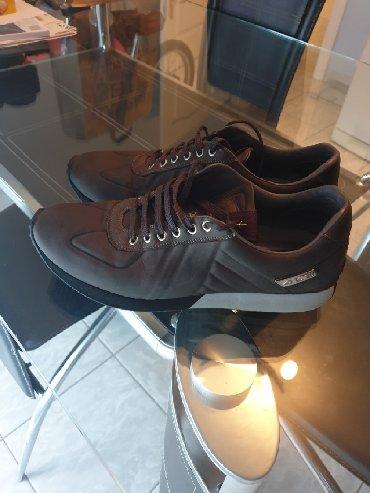 Paciotti - Srbija: Original Paciotti cipele, vel 8, u odlicnom stanju