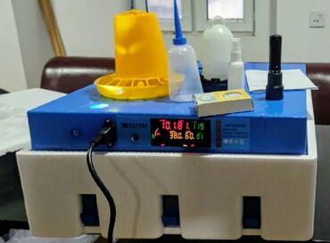 3263 elan | KƏND TƏSƏRRÜFATI HEYVANLARI: Inkubator inkubatorlarin birinci əl satişiunversal inkubator 64
