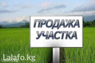 цены на пансионаты в иссык куле в Кыргызстан: Продажа 5 соток