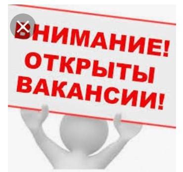 Тез Арада Реализатор керек!!!! в Лебединовка
