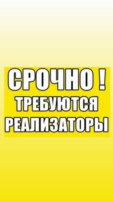 краскопульт в бишкеке в Кыргызстан: Торговый агент. Без транспорта. С опытом. 5/2