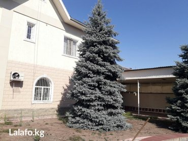 Продаю 2эт.дом в хорошем районе, ул.Кропоткина, 225м2, центр.канализ,  в Бишкек