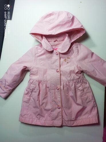 где можно купить саженцы яблони в бишкеке в Кыргызстан: Куртка на девочку, в отличном состоянии. На флисе, весна- осень