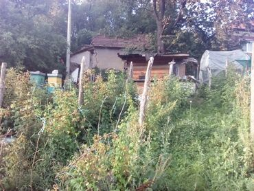 Drva - Srbija: Na prodaju 7 ares Poljoprivredno zemljište Vlasnik