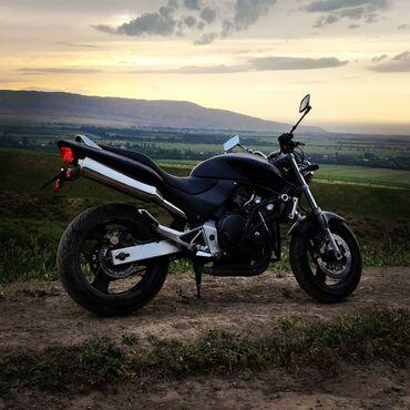 Honda в Бишкек: Мотоцикл Honda CB250 Hornet. 40 лошадей. Красная зона с 16 тысяч оборо