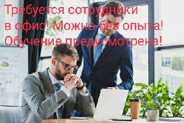 агентство элитной недвижимости в Кыргызстан: Агент по недвижимости от 300 до 1 500 USD на руки.   Агент в сфере про