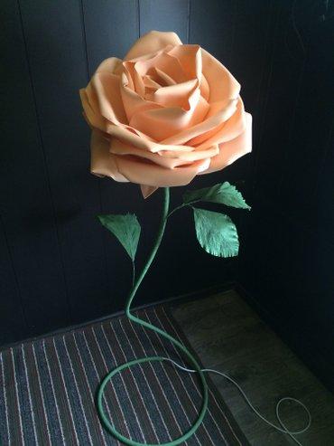 Большая роза ночник.большие цветы из в Бишкек
