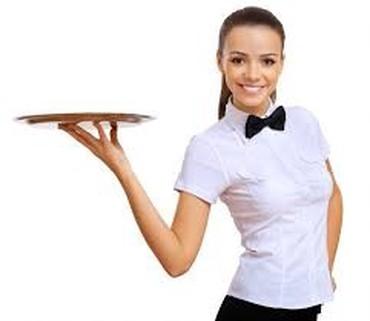 Dajem posao - Batajnica: Potreban konobar/konobarica teritorija opštine Surčin Radiofar, za vis