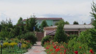 Отдых на Иссык-Куле - Кызыл-Суу: Коттедж, Кызыл-Суу, Барбекю