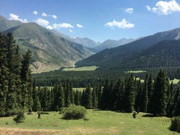 Продаю земельный участок селхоз в Бишкек