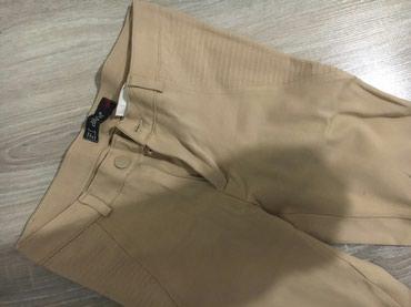 Pantalone-helanke-tamno-borda-bojaa - Srbija: Pantalone-helanke nove s velicina