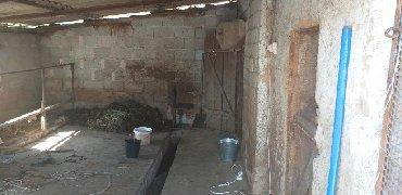 снять частный дом в бишкеке в Кыргызстан: Продам Дом 60 кв. м, 3 комнаты