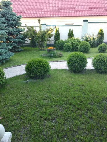 Домашний персонал и уборка в Кыргызстан: - Посев газона; - Система полива (автоматическая и механическая); - Пл