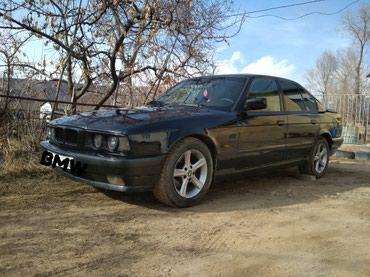 BMW в Каракол