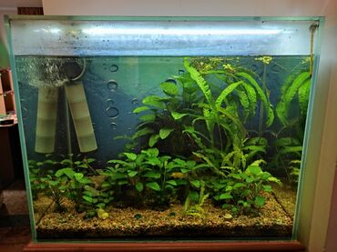 Продаю аквариум. Сделан под заказ. Длина 87 см, ширина 52 см, высота