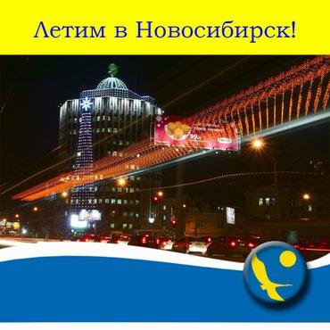 Новосибирск авиабилеты на январь в Бишкек