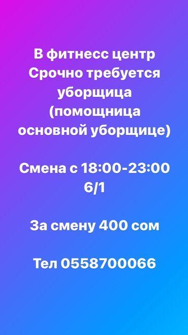 Работа на вынос - Кыргызстан: Техничка. 6/1