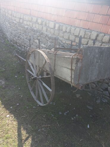14 elan | HEYVANLAR: At Arabası satilir.yəhər xamut yüyən əlavə verilir.ati qoş sur