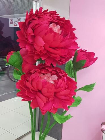 цветы для домашнего декора в Кыргызстан: Большие Цветы. Ростовые цветы. Цветы из бумаги. Фотозоны. Свадебные