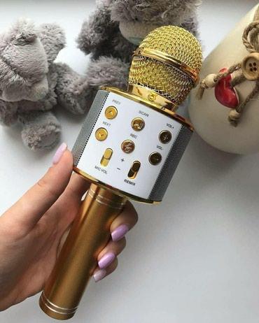 Беспроводные караоке-микрофоны самая в Novopokrovka
