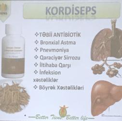 kordiseps - Azərbaycan: Tebabet KORDİSEPS (tebii antibyotik)
