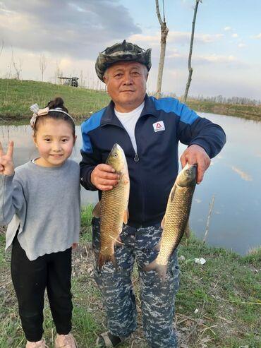Рыбалка. Тапчан-бесплатно! Семейный отдых! Место для семейного отдыха