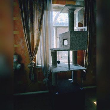 Дешего большой домик для кошки в Бишкек