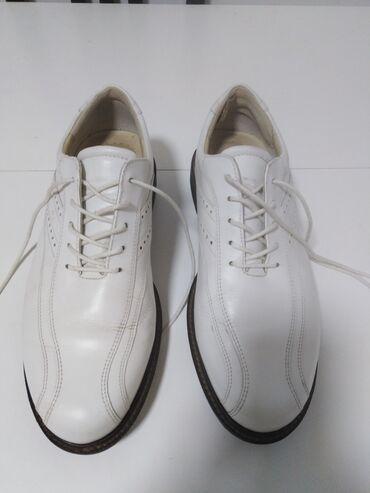 Muška obuća | Srbija: ECCO kožne cipele za GOLF,izradjene od prirodne 100%kože,i spolja i