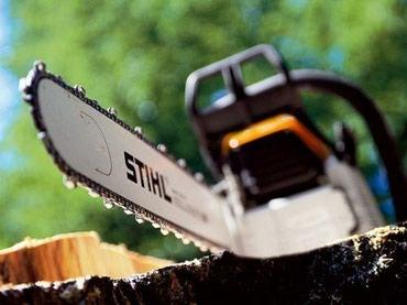 Пилю дрова, небольшие деревья, выкорчевываю пни, кустарники, подрезаю  в Лебединовка