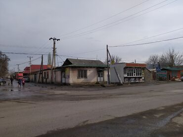 гребень от вшей в аптеке бишкек in Кыргызстан | ДРУГОЕ: 200 кв. м, 10 комнат, Бронированные двери, Евроремонт, Сарай