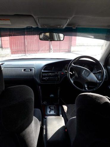 Honda Accord в Беловодское