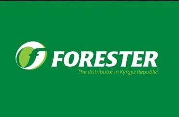 13344 объявлений: В крупную дистрибьюторскую компанию ОсОО Форестер требуются экспедитор