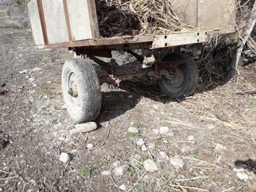 Qax şəhərində Traktor ucun lapet. 2×2.