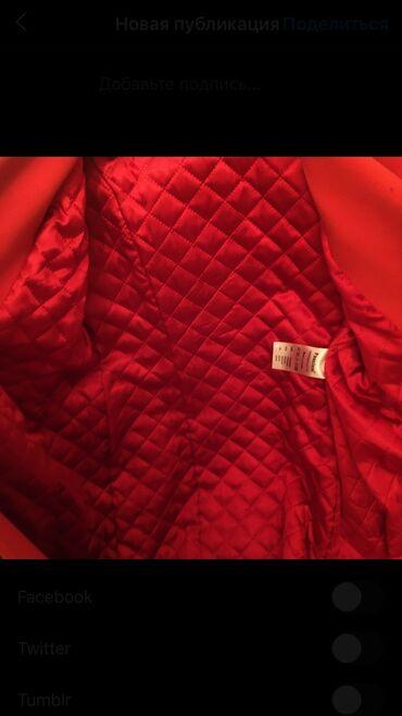 Продаю пальто очень красивый цвет Покупали за 2500 надевали пару
