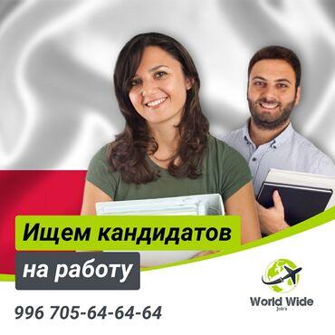 виза польша в Кыргызстан: Работа в Польше! Годовая рабочая виза! Контракт на 1 год ! ВНЖ   Требу