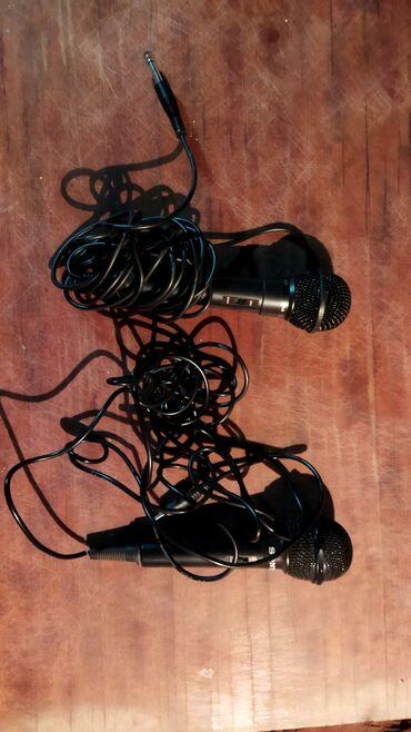 джек рассел терьер бишкек in Кыргызстан | СОБАКИ: Продаю 2 микрофона в отличном состоянии, один на мини джек(3,5) другой