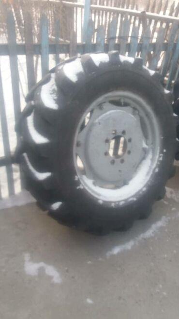 Продаю передние шины с дисками на МТЗ (на балочный мост). Размер
