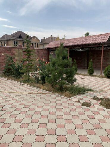 китайский пластырь для суставов бишкек in Кыргызстан | ОРТЕЗЫ: 240 кв. м, 9 комнат, Забор, огорожен