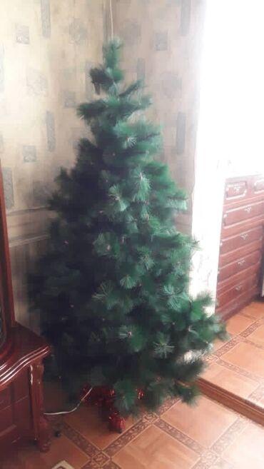 Товары для праздников - Кыргызстан: Новогодняя ёлка(без игрушек)  Длина: 180см Стоимость: 1000 сом