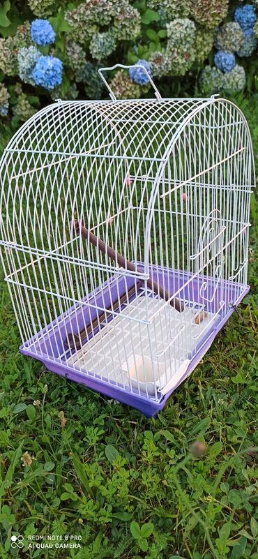Quad - Srbija: Kavez za ptice
