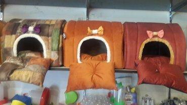 balaca itler satilir - Azərbaycan: It ve pisikler ucun Yuvalar satilir. Catdirilma movcuddur