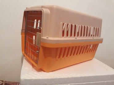Bakı şəhərində Itler ve pisiklercun boyuk olcude dasiyici konteyner  tezedir