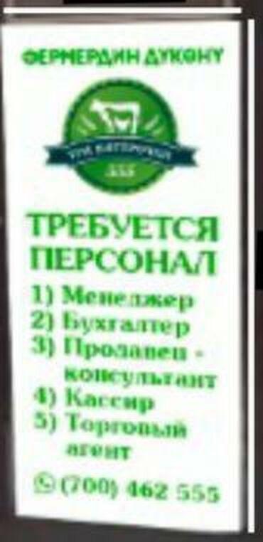 alfa romeo gtv 18 mt в Кыргызстан: Требуется персонал в продуктовый магазин. 1. Бухгалтер 2. Кассиры 3. П