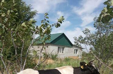 Недвижимость - Талас: Продажа домов 120 кв. м, 4 комнаты, Свежий ремонт