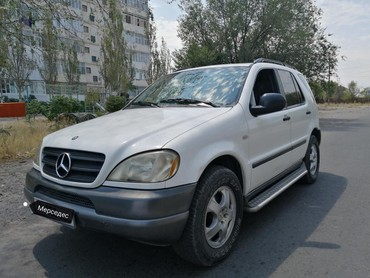 Mercedes-Benz ML 320 1999 в Токмак